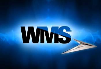 В WMS исполняют желания геймеров