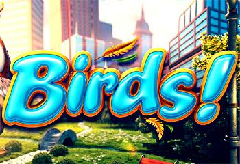 В Betsoft появились птицы — multigaminatorcasino.com
